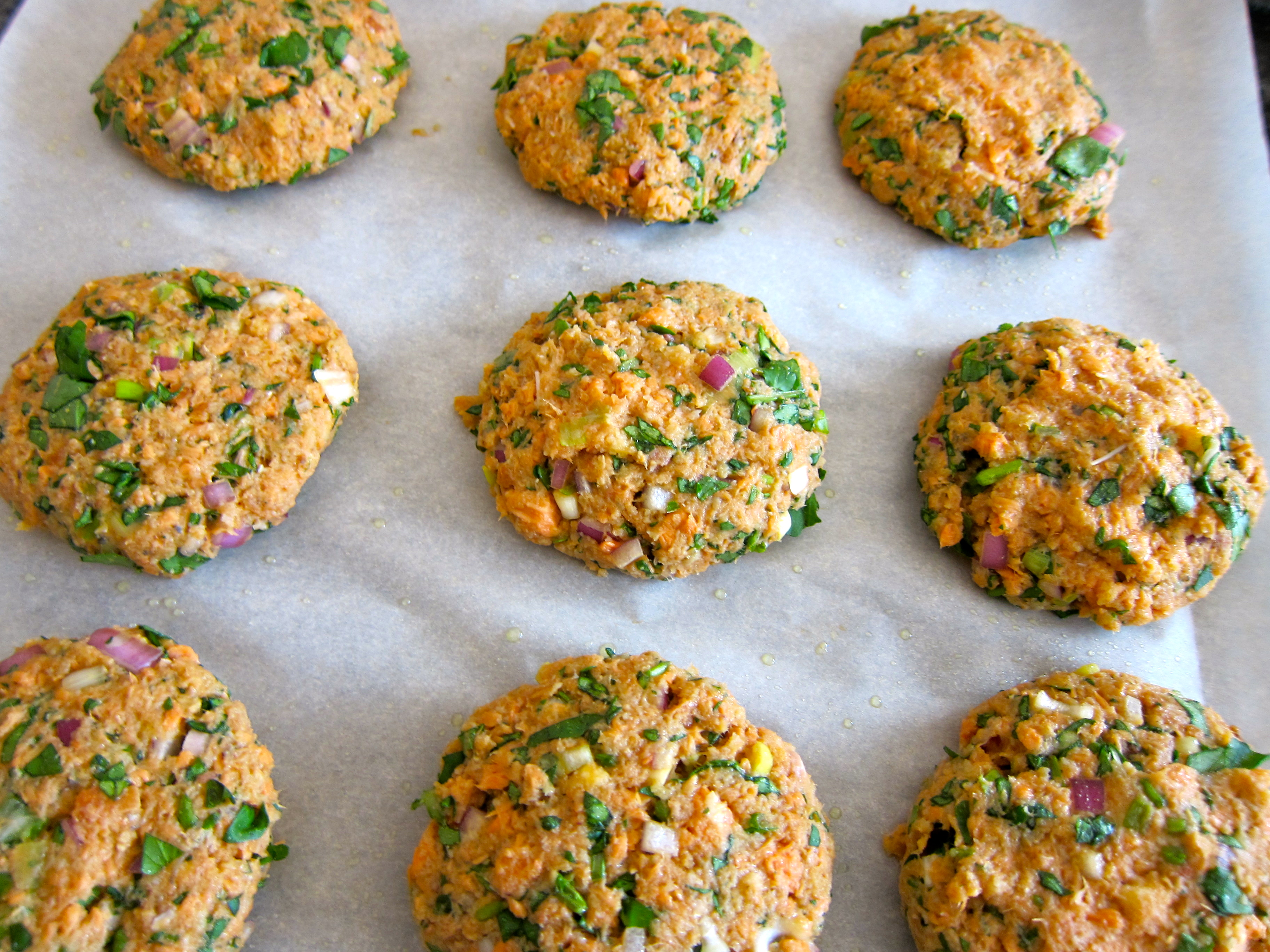 how to make salmon patties from canned salmon with crackers