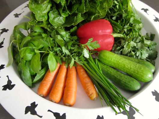 Herb Noodle Salad